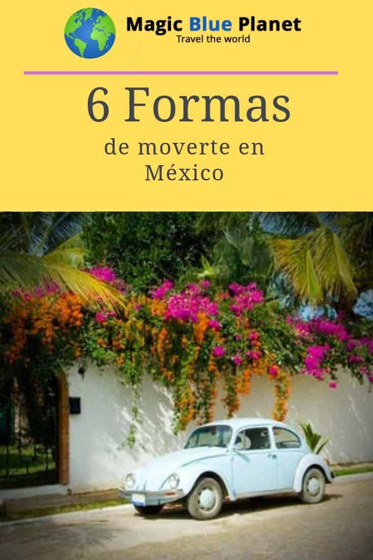 Mexico Domestic Travel Pin 3