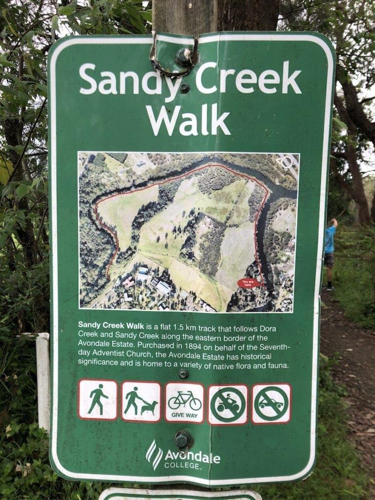 Sandy Creek Walk Dora Creek