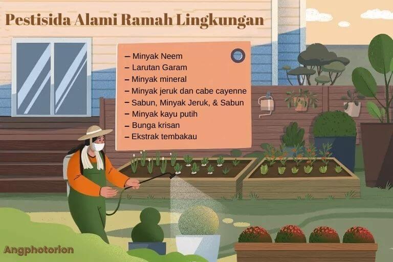 pestisida alami ramah lingkungan