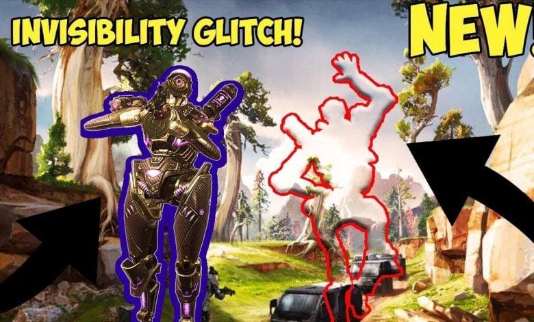 User Submission: Invisibility Glitch
