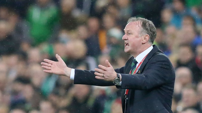 Michael O'Neill West Brom New Manager