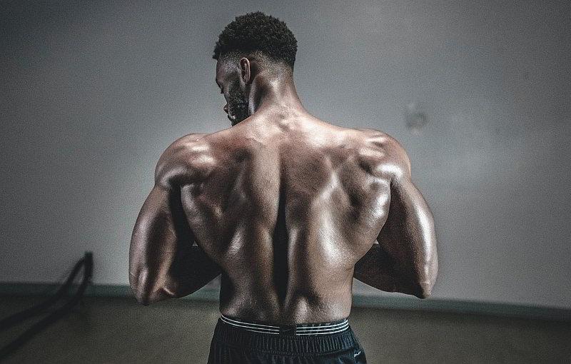 wie schnell bauen sich Muskeln auf