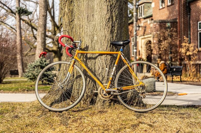 A bike leaning unlocked against a tree