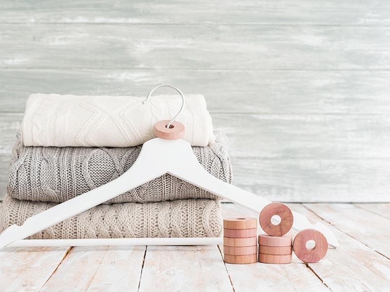 proteggere la lana dalle tarme