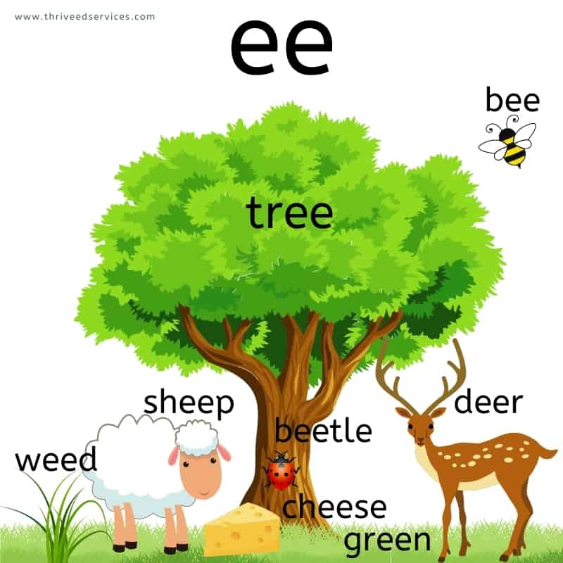 long e spelled ee poster with images