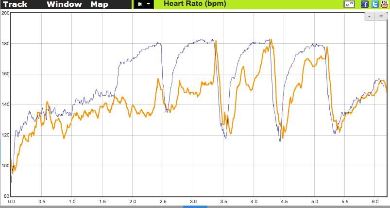 Проверка точности пульсометра Polar Vantage V2