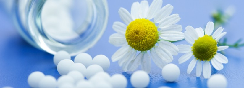 EHBO Doos klassieke homeopathie
