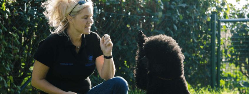 Therapeutin Stefanie mit Therapiehund Mara