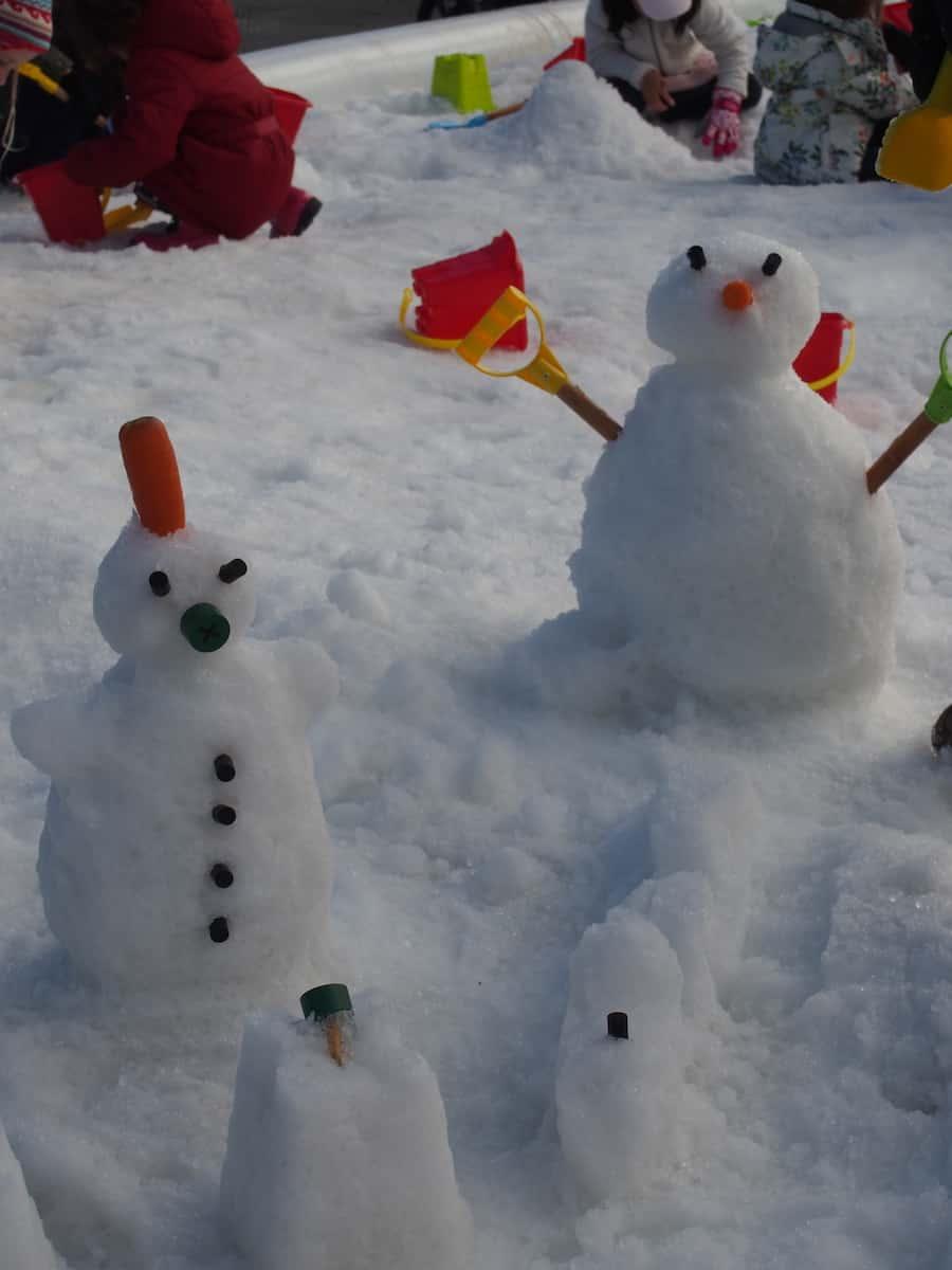 winter activities hunter valley gardens