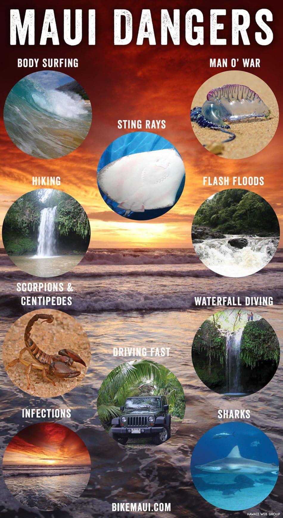Maui dangers
