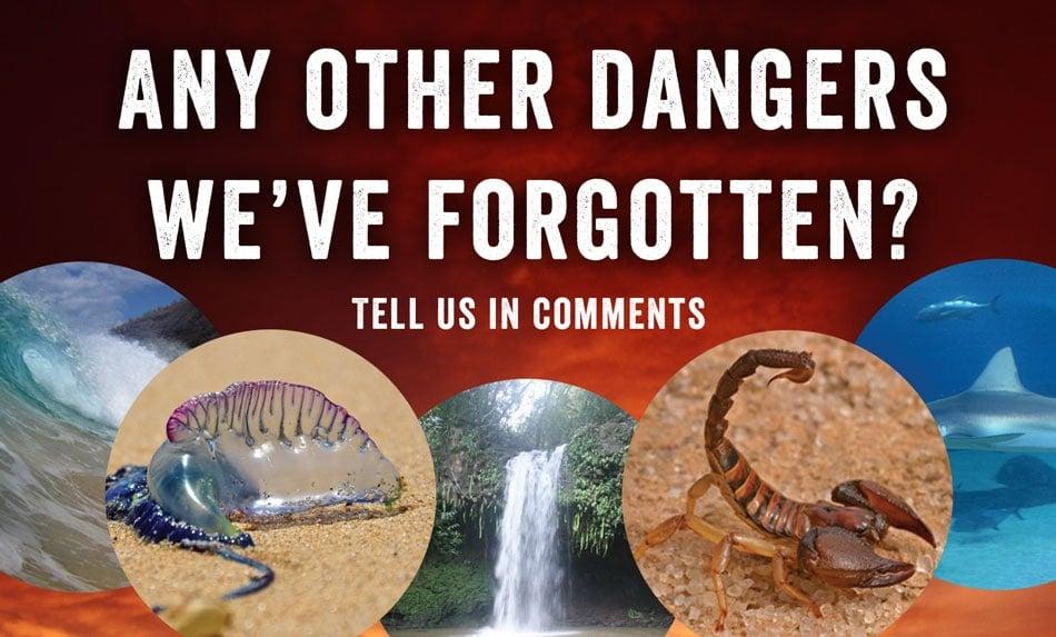 Maui dangers comments