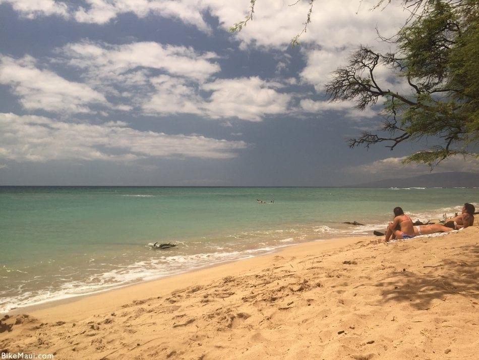 Kiawe Trees Maui Hawaii