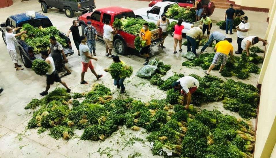 Entrega de verduras en Usumatlán