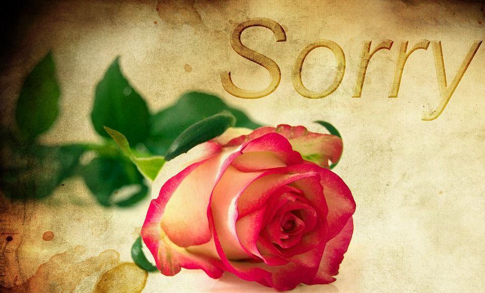 Entschuldigungen sagen