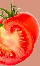 Transparent image tomatoes