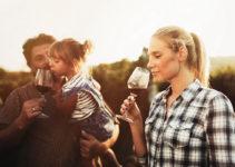 Visit the Hunter Valley's Best Kid-Friendly Wineries