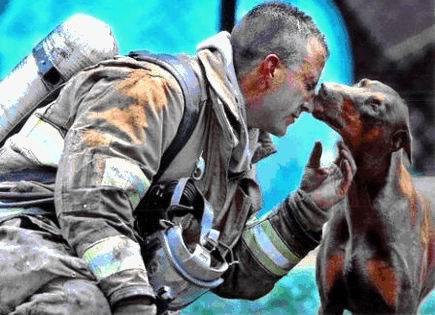 Dog Kissing Firefighter