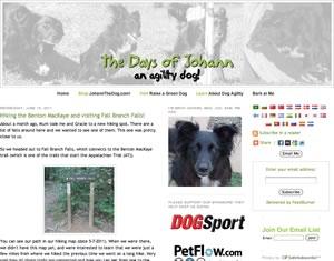 The Days of Johann An Agility Dog