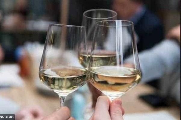 Wijn cruise en proeverij in Amsterdam