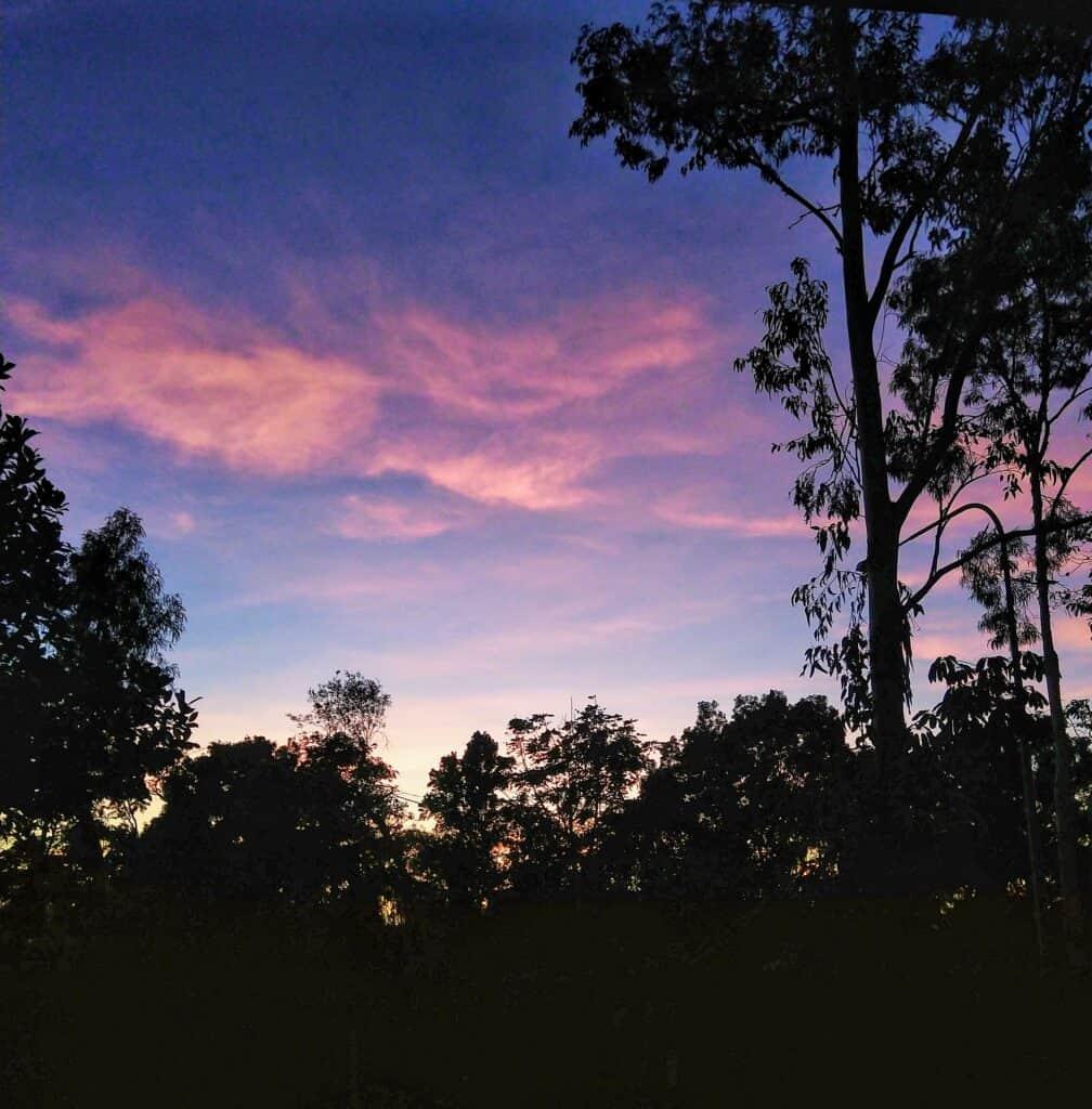 Sunrise in October in a tropical garden