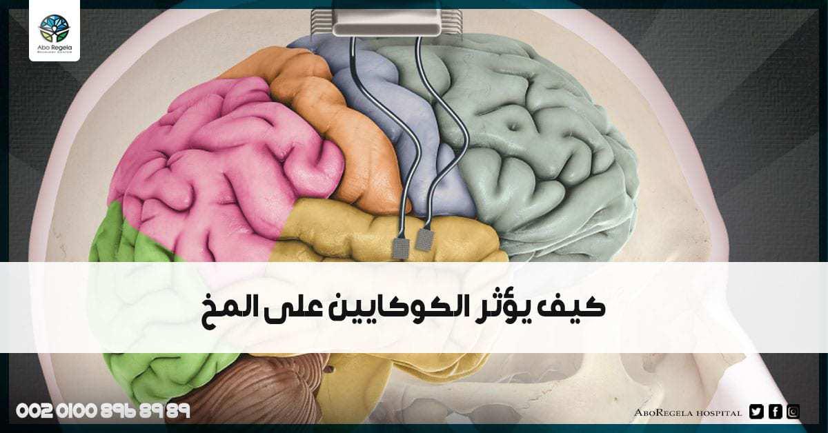 كيف يؤثر الكوكايين على المخ