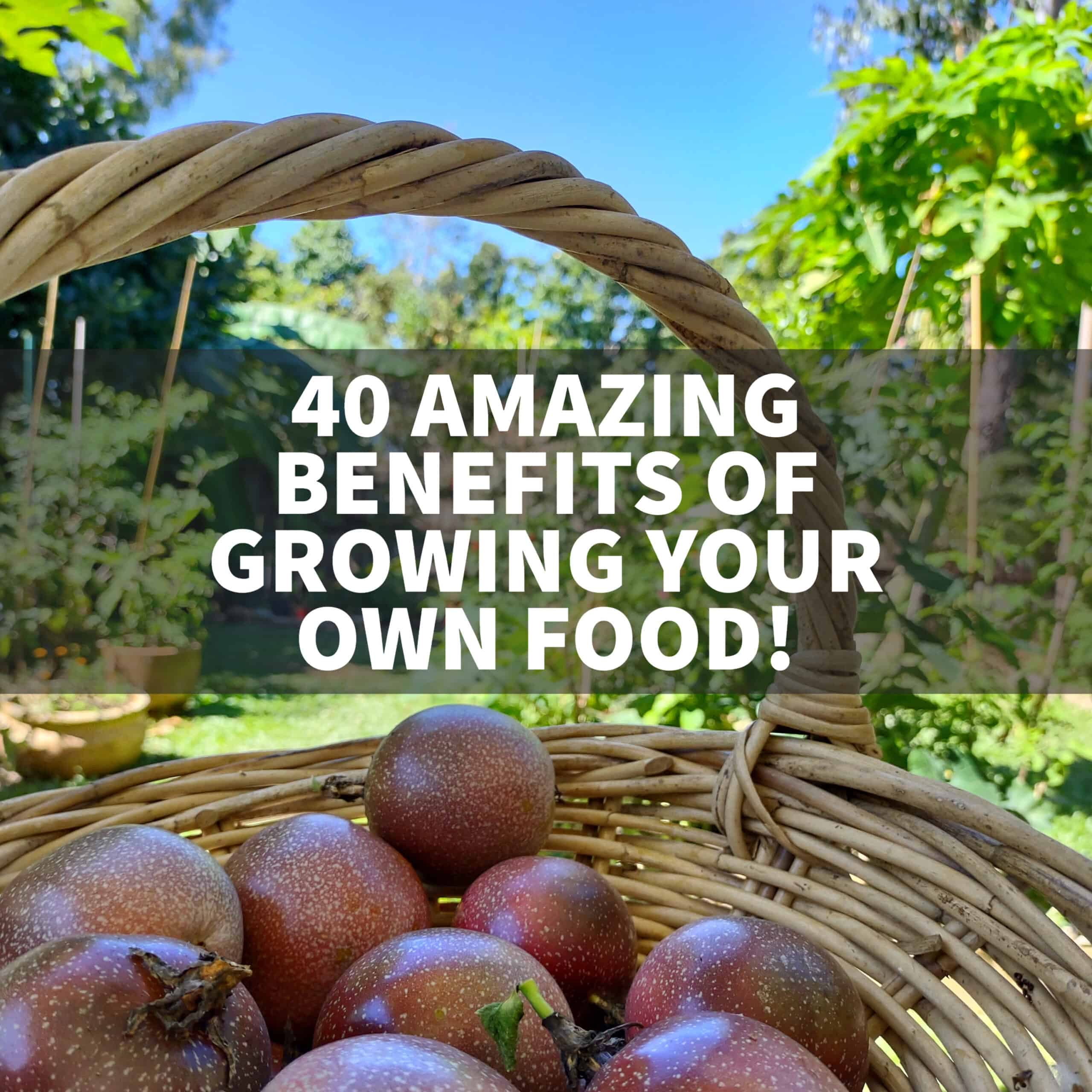 list of benefits of growing your own food (2)