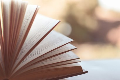 livres NERFRANCE