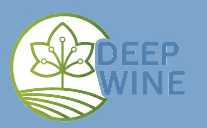 Logo DeepWine