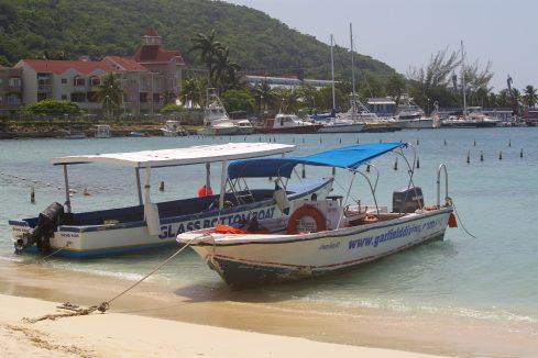 Padi Open Water - Ocho Rios, Jamaica