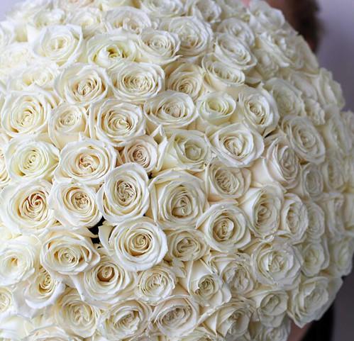 Монобукет из 101 Розы Эквадор №1142 - Фото 32