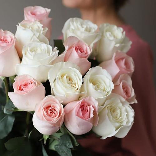 Монобукет из 15 роз (Эквадор) №1031 - Фото 8