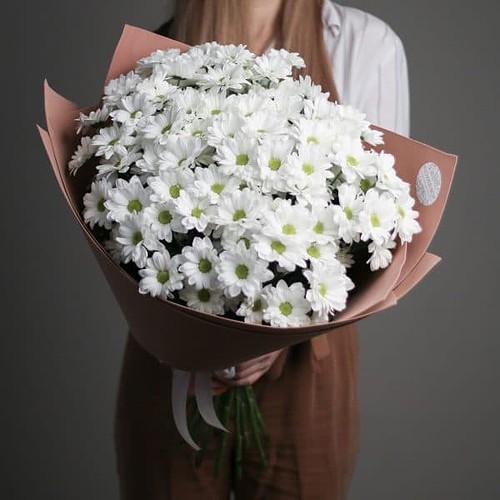 15 кустовых Ромашковых Хризантем в  оформлении №689 - Фото 5