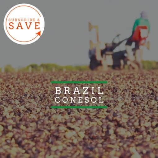 Brazil: Conesol - Badger & Dodo