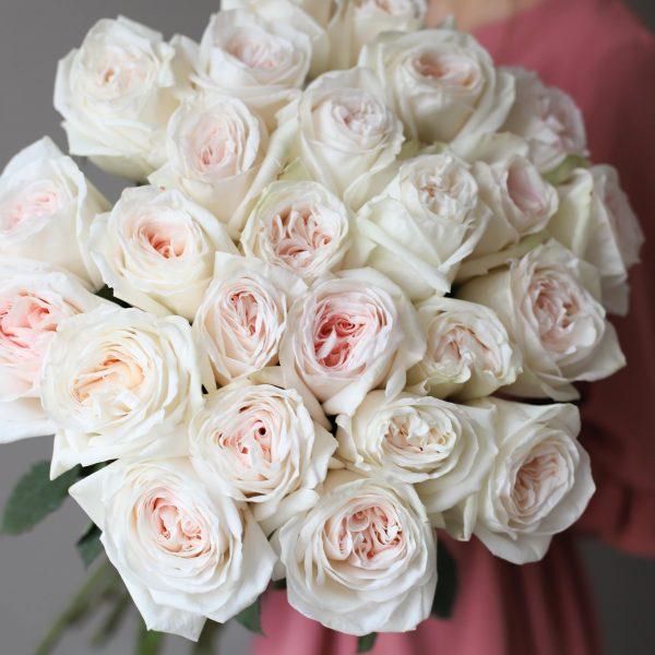 Монобукет из 25 пионовидных роз №1029 - Фото 2
