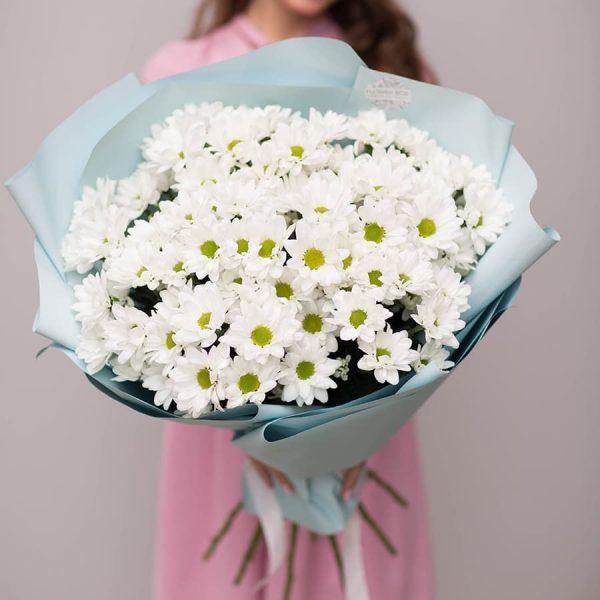 Букет из 11 ромашковых хризантем №615 - Фото 1