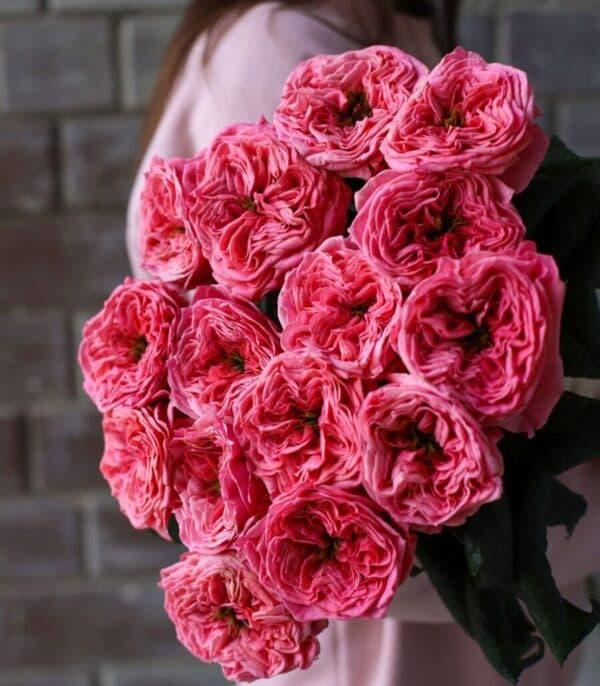Монобукет из пионовидных Роз 15 шт №1116 - Фото 2