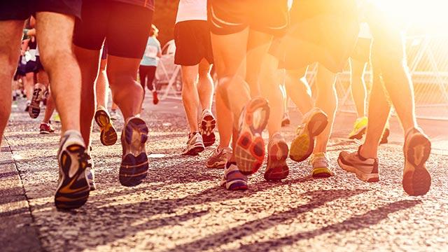 Veteran's Day Virtual Run
