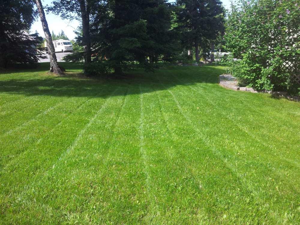 Anchorage's Best Lawn Company!   Alaska Premier Services.