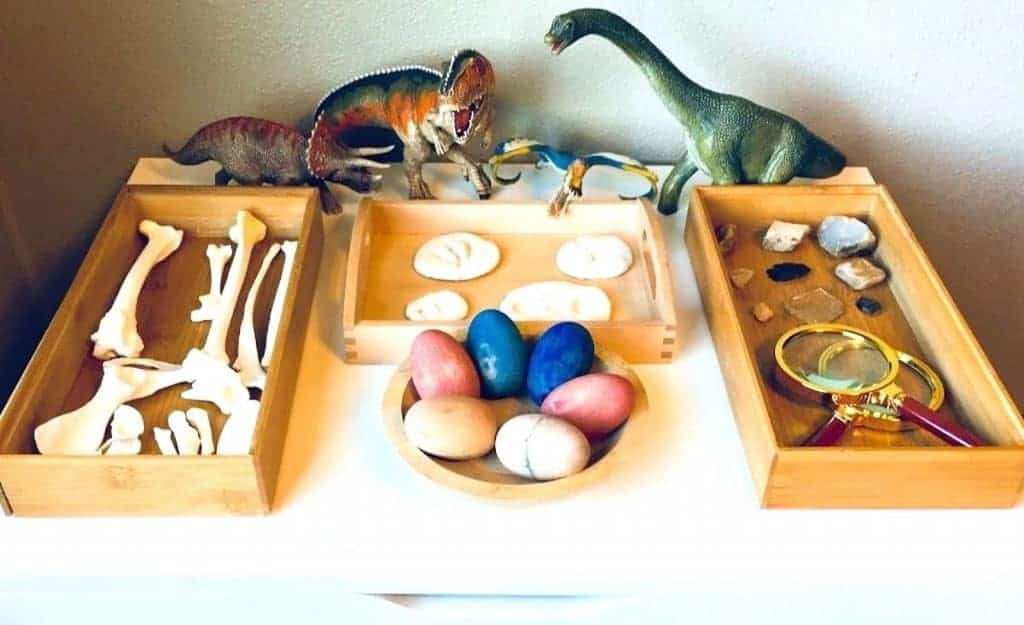 Dinosaurs, animal bones, eggs, and rocks & minerals on display in tray with magnifying glasses