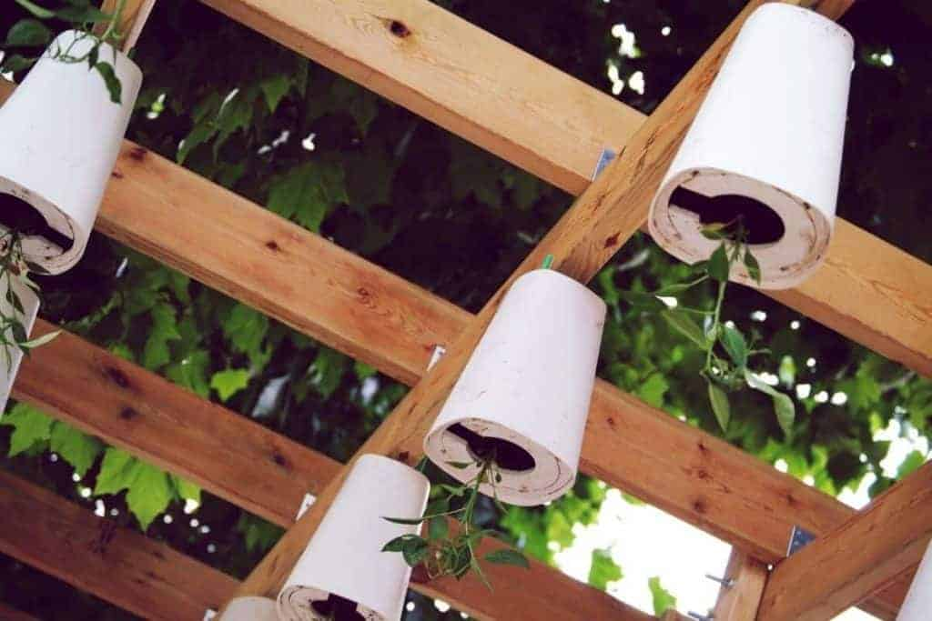 What is Upside Down Gardening