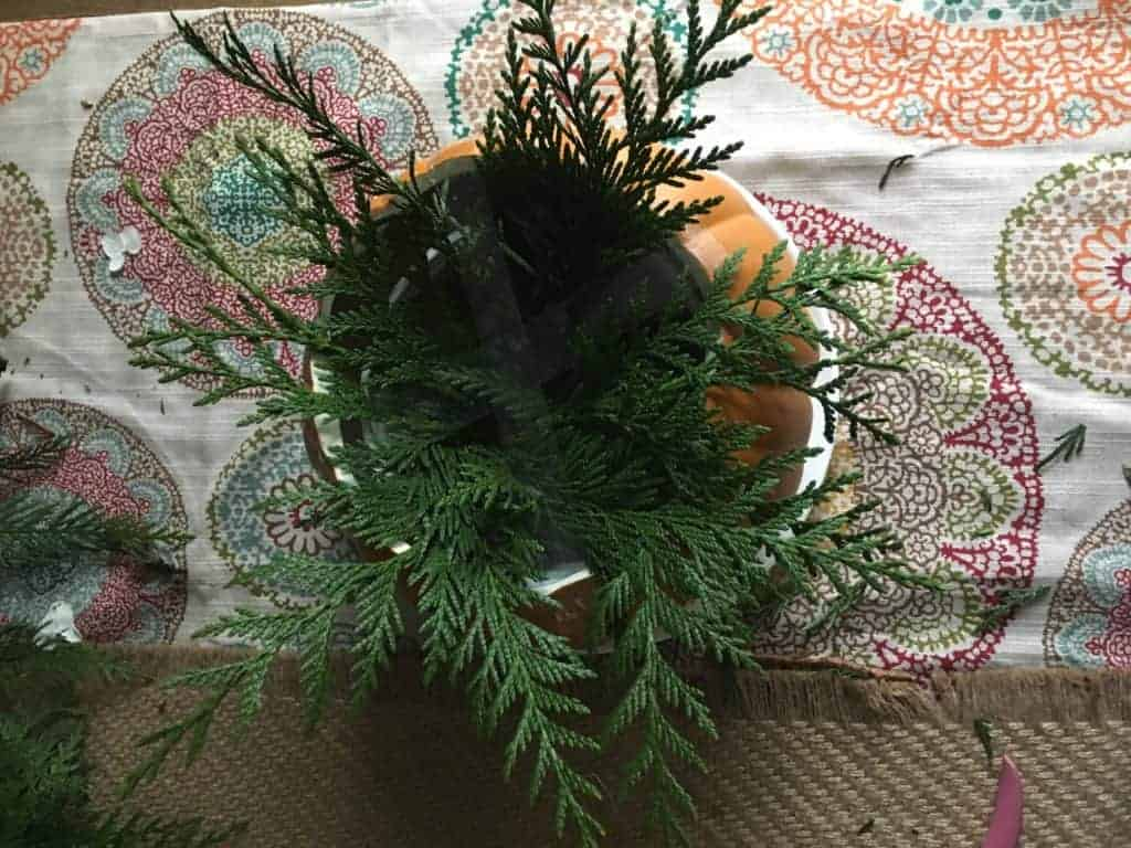pumpkin planter with greenery poking out