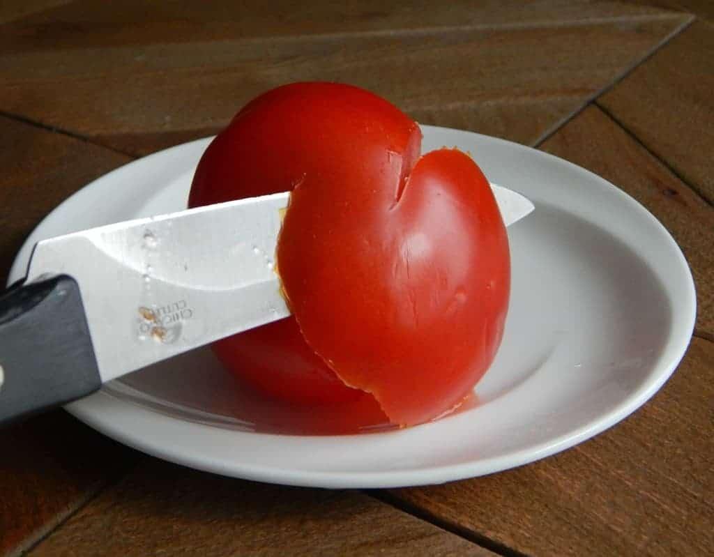 tomatorose3