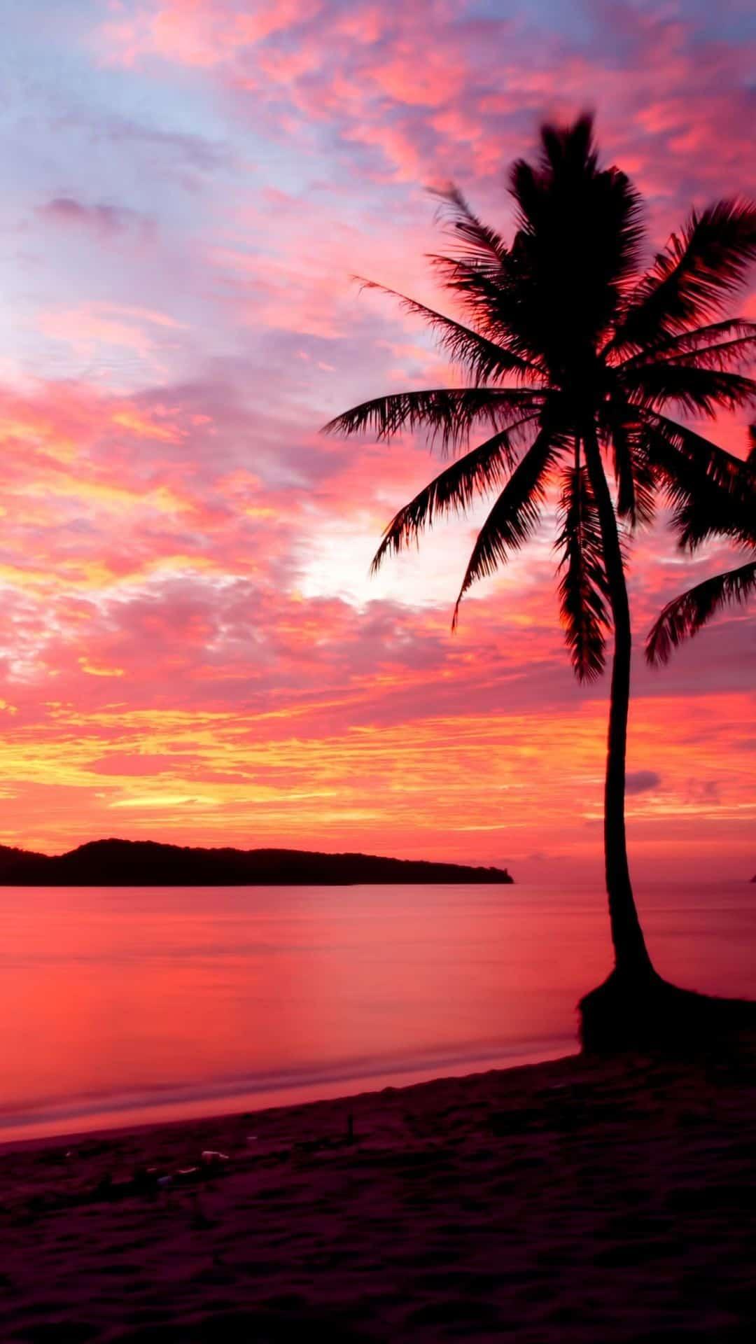 Sunset iphone Wallpaper