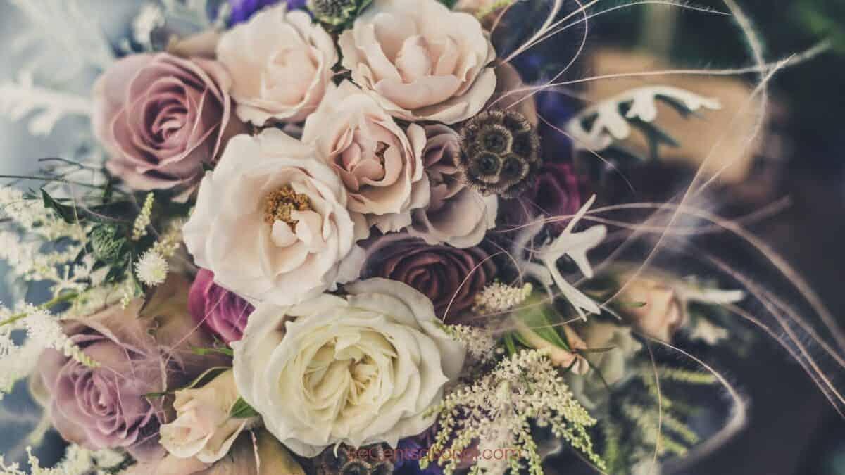 Flower Wallpapers Wallpapers, flower Backgrounds for desktop