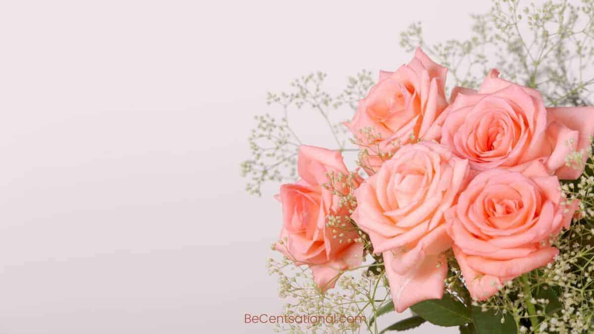 roses Wallpapers Wallpapers, flower Backgrounds for desktop