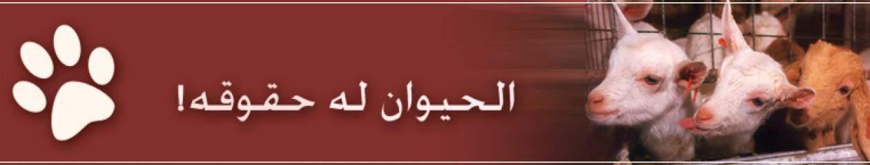 hayawan.org