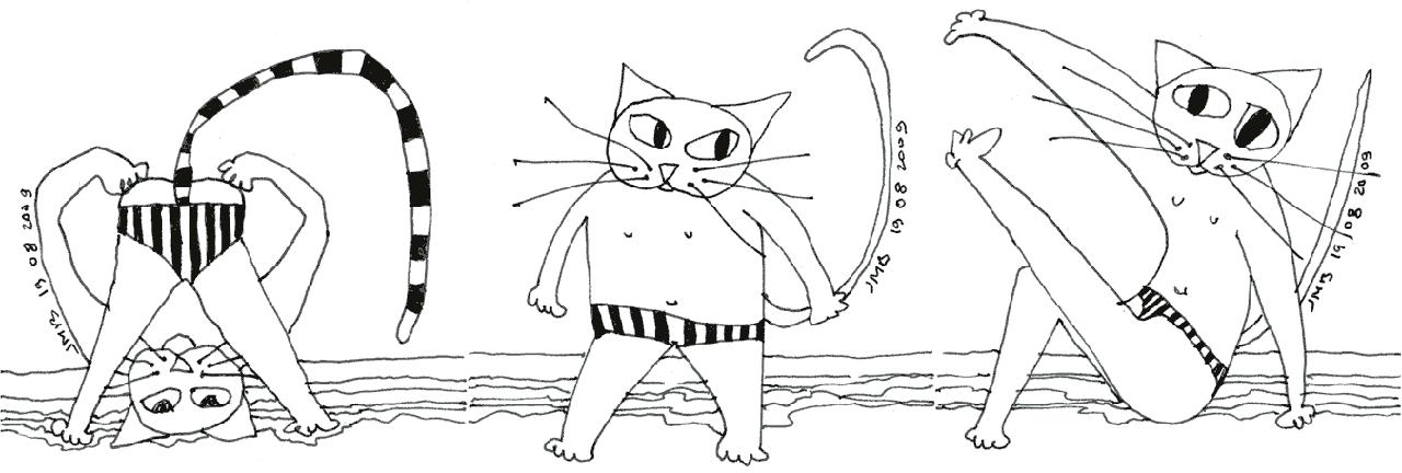trois chats en maillot de bain-2009-08-19