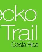 New GeckoTrail-Logo-actual