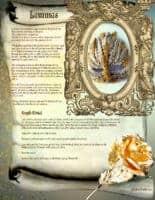 Lammas - Pagan / Wiccan holiday information page