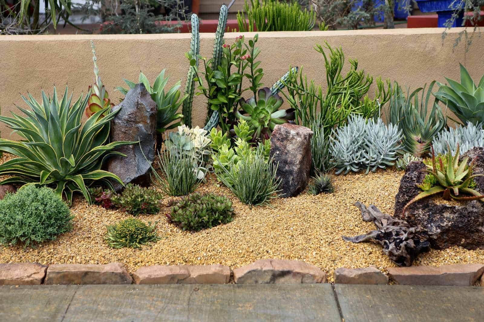 the use of rocks and mulch in a succulent garden landscape